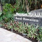 ハワイへ行こう シェラトン・ワイキキからの眺めは最高!